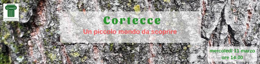 Cortecce, 11 marzo, ore 14:00
